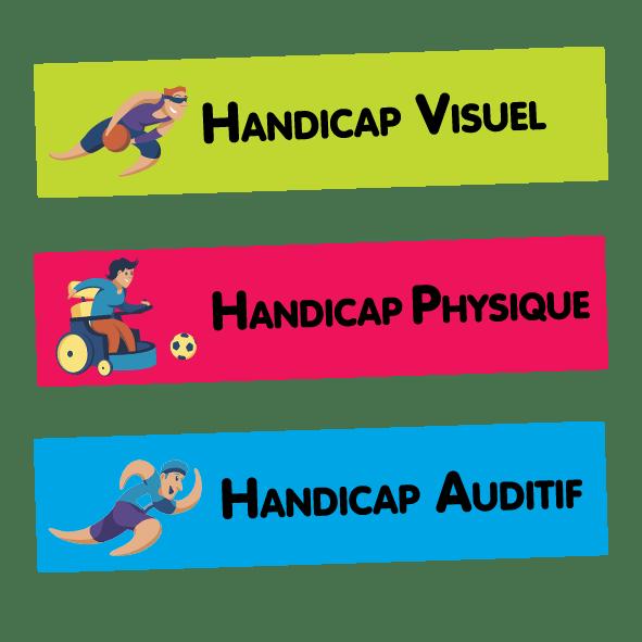 Handicaps visuel, physique et auditif